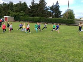 Primary 3 - Sports Day!